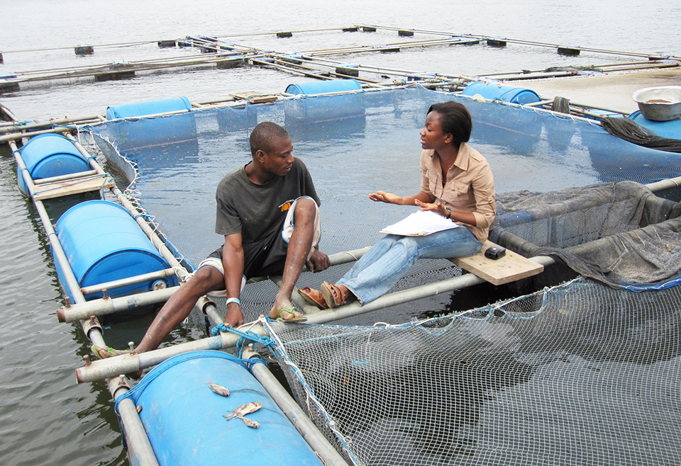Article image for A look at tilapia aquaculture in Ghana
