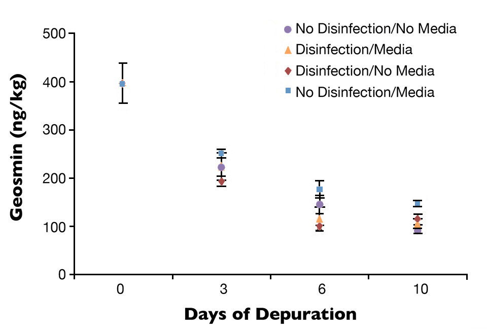 Geosmin concentrations