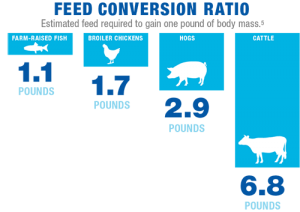 GAA-Food-Supply-Infographic-Feed-Conversion-Ratio