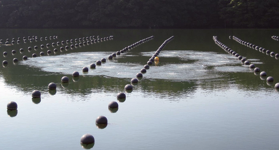 Article image for Artificial upwelling maintains favorable summer environment for farmed oysters