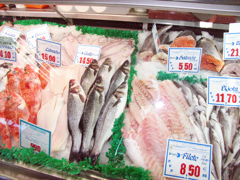 Article image for FAO fish indices enhance global seafood price evaluations