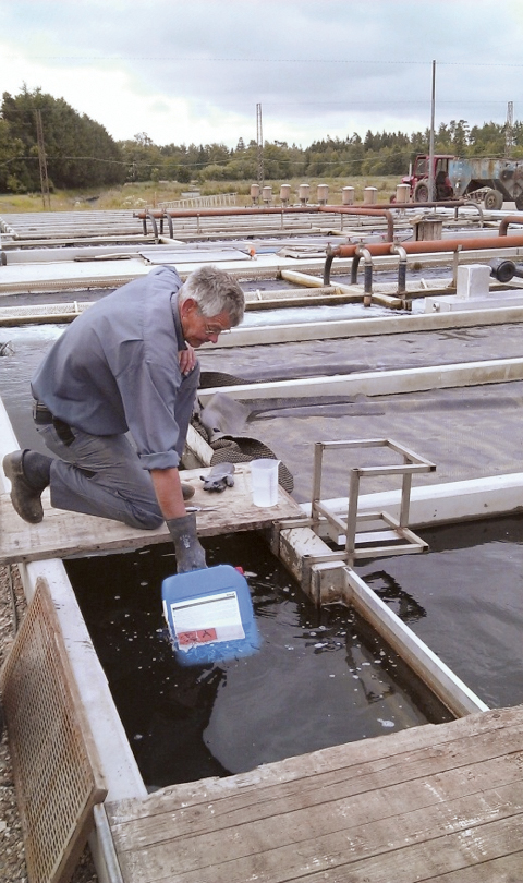 Article image for Peracetic acid products expand sanitizing, organic water treatment options