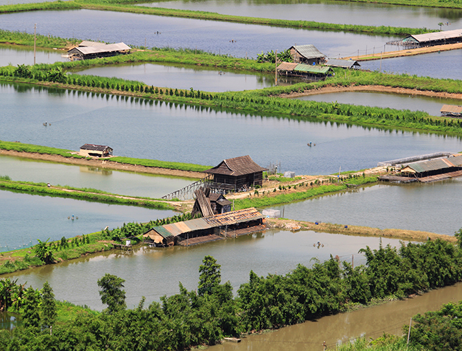 Article image for Aquaculture certification steers to zone management