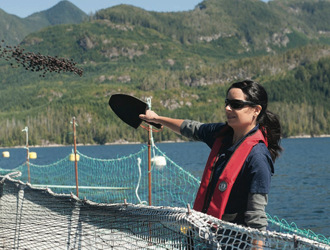 Article image for B.C. salmon farmers unveil sustainability report