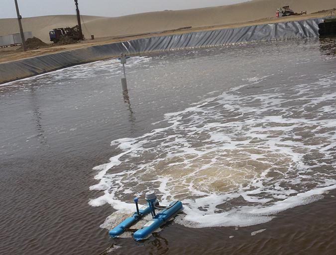 Article image for Shrimp biofloc production trials in Saudi Arabia