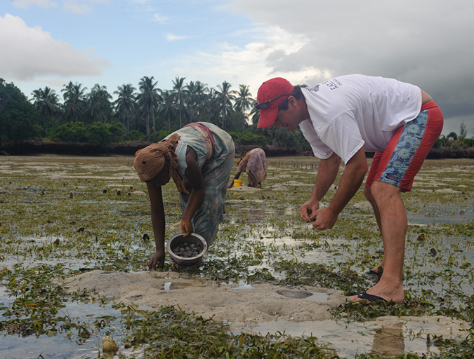 Article image for Social oysters: Aquaculture inspiring communities
