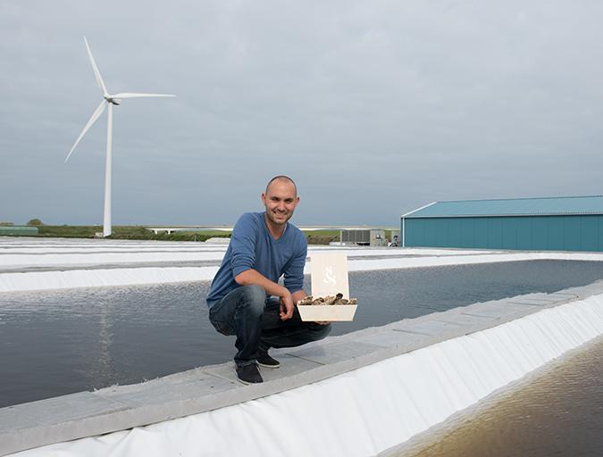 Article image for Dutch shellfish farmers bringing the sea onto land