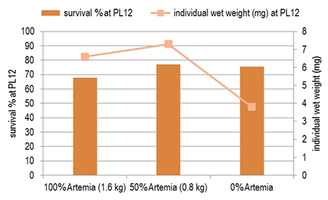 Fig 2. The best balance between artificial diets and Artemia.