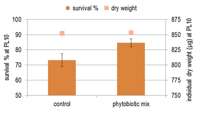 Fig 4. Enhanced shrimp survival during the hatchery cycle by applying various plant extracts.