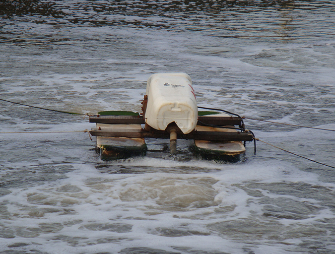 Article image for La correcta circulación del agua en los estanques, Parte 2