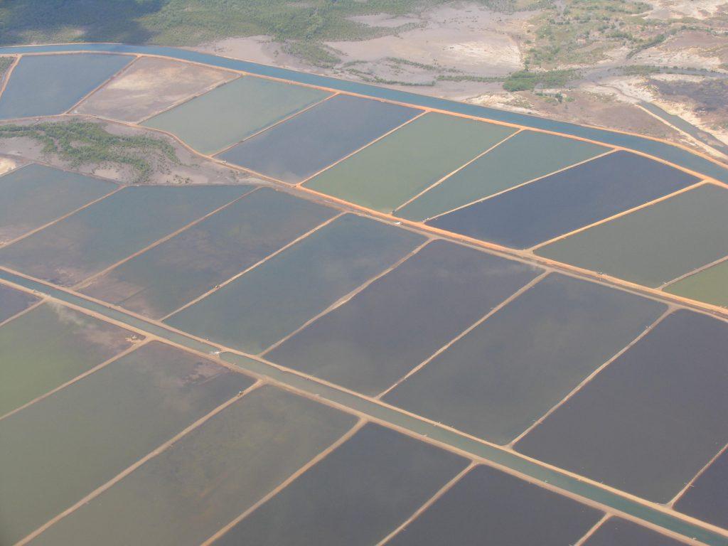 Article image for Reflexiones sobre la mejora de los esfuerzos de intervención de la acuacultura responsable