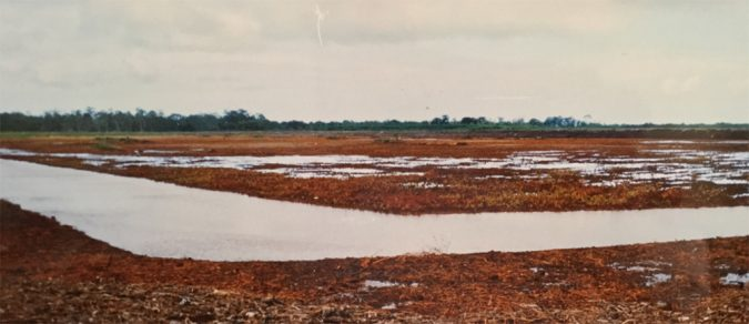 Ponds built on acid-sulfate soils are very difficult and costly to manage. Photo by Darryl Jory.