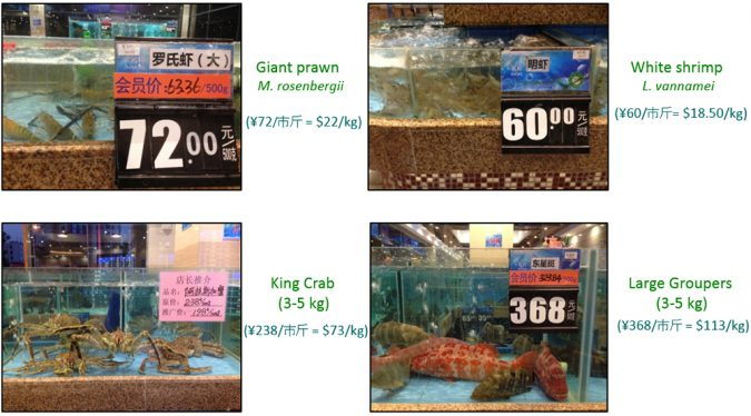 Fig. 2. Recent (2016) retail prices for seafood at a mid-range seafood restaurant in Zhongshan, China. Prices range from $19-23/kg. for giant freshwater prawns and Pacific white shrimp, to upwards of $73/kg. for Alaska king crab and $113/kg. for various groupers. Chinese consumers purchase the entire animal, so a single dish of grouper can cost up to $565, as one of eight dishes traditionally served at dinner. More expensive species are also common. Photos by Anthony Ostrowski.