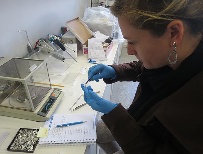 Article image for Biofloc consumption by Pacific white shrimp postlarvae