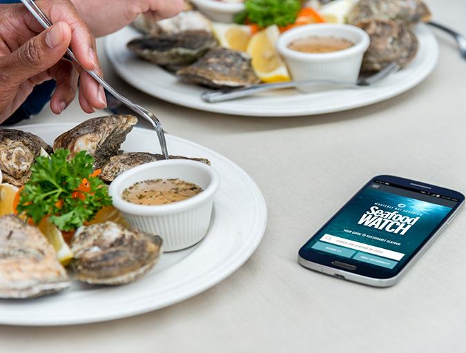 Article image for Seafood Watch: Criticism of ratings programs outdated