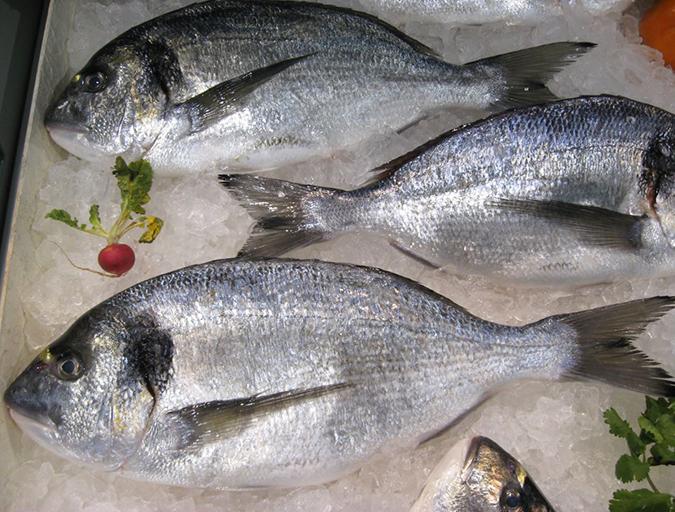 Article image for Con los productos de mar, la salud está definitivamente en el menú