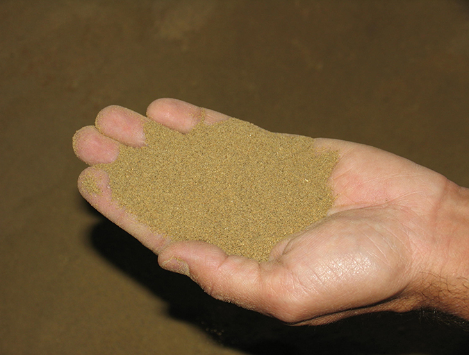 Article image for Shrimp feeds depend on proper ingredient grinding