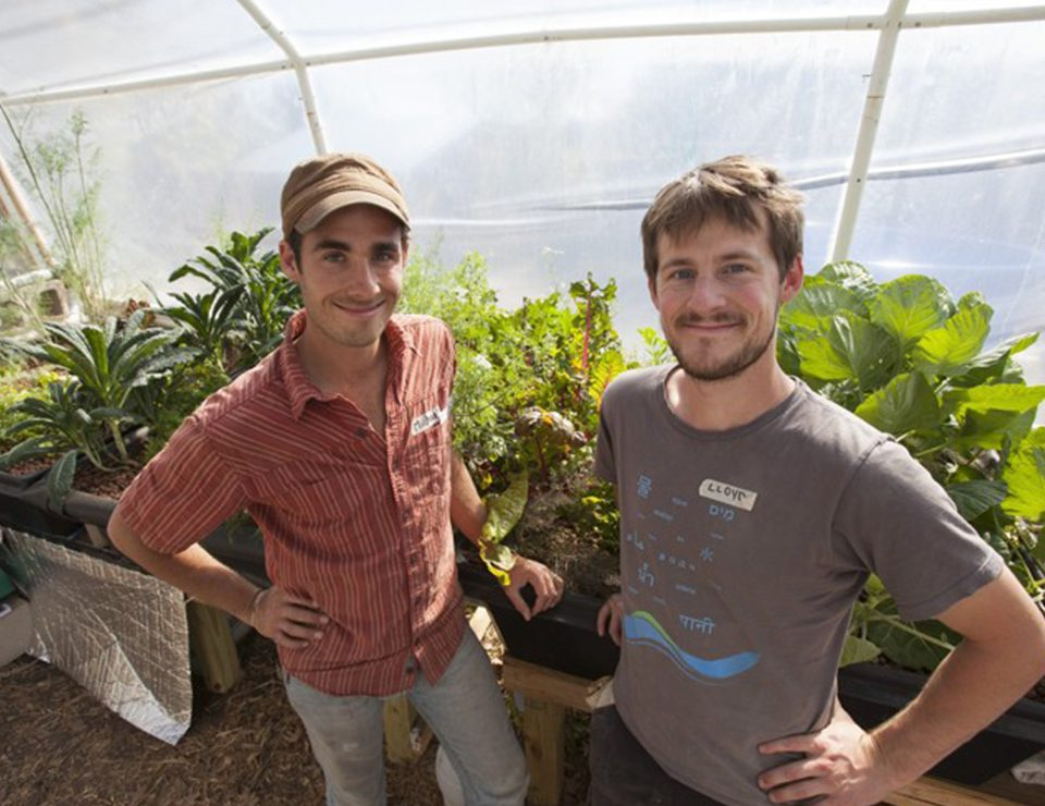 Two guys in an aquaponics facility