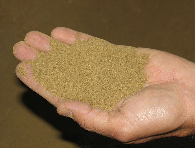 Article image for Mixing Cost Center is at the heart of feed manufacturing