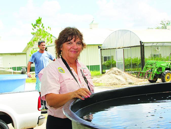 Article image for Premios de la Casa Blanca sugieren el potencial de la acuacultura en Estados Unidos