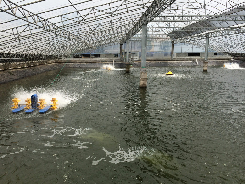 aquaculture expansion