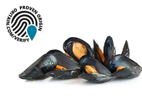Article image for ¿Puede una 'huella digital química' disuadir el fraude en los productos de mar?