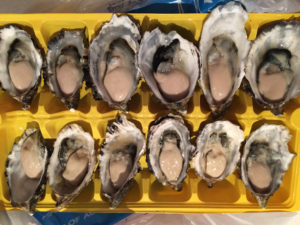 nutritious oysters