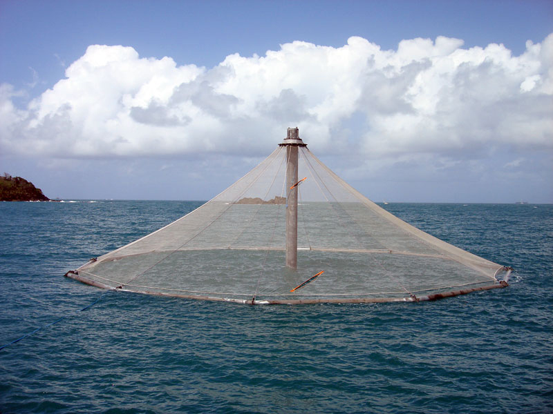 Article image for Do you know offshore aquaculture when you see it?