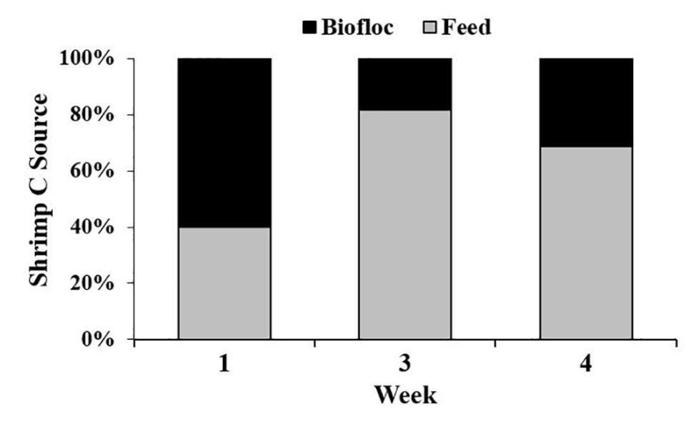 biofloc