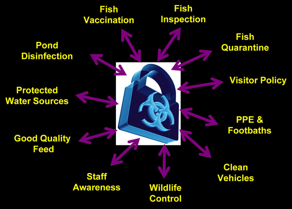 biosecurity plan aquaculture