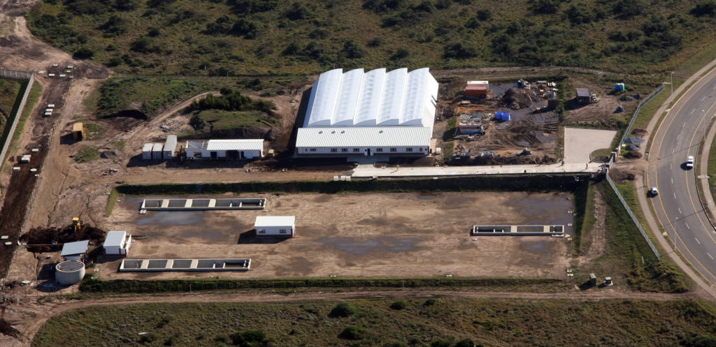 Article image for From South Africa, a cautionary tale for aquaculture investors