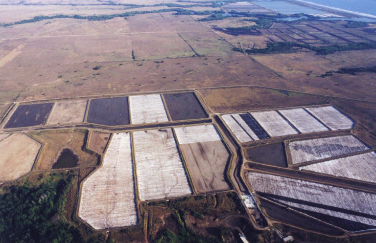 Article image for La cal desempeña un papel crucial en el manejo de estanques acuícolas