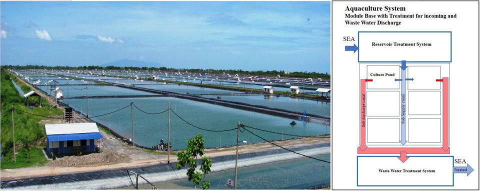 intensive shrimp farm Malaysia