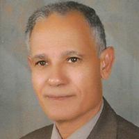 Dr. Abdel-Fattah M. El-Sayed