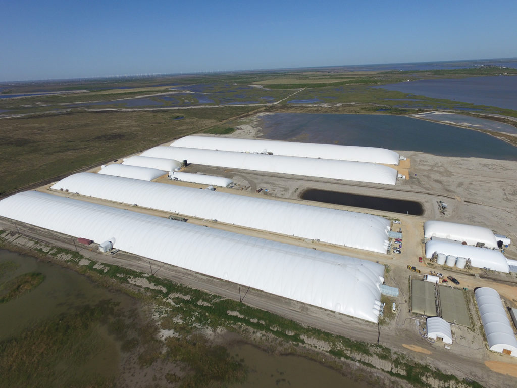 Article image for Stormborn: The U.S. land-based shrimp farming industry