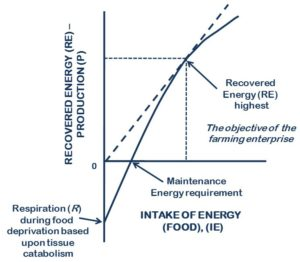 biofloc technology