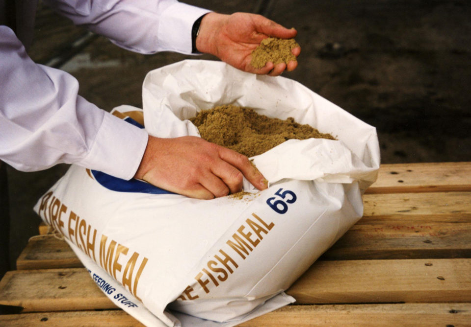 marine ingredients fishmeal