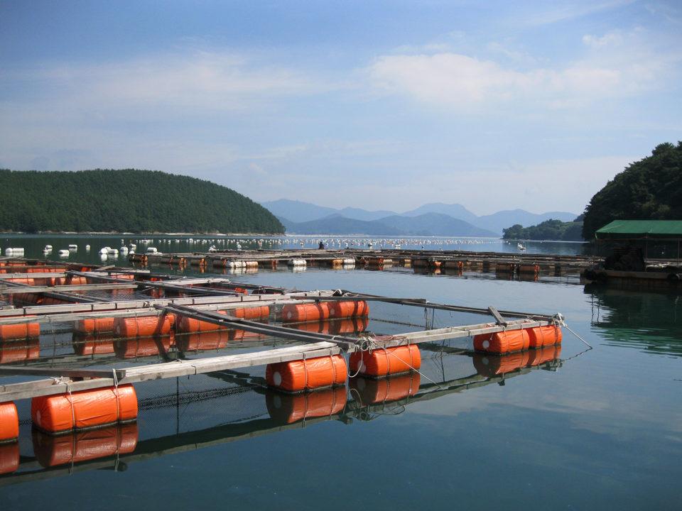 hot spots in the ocean aquaculture production