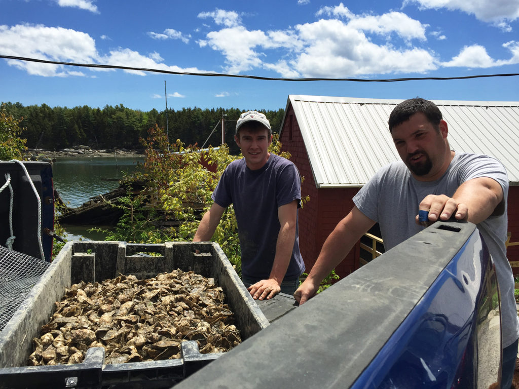 Article image for Repurposing Maine: Aging fishing facilities find new life with aquaculture