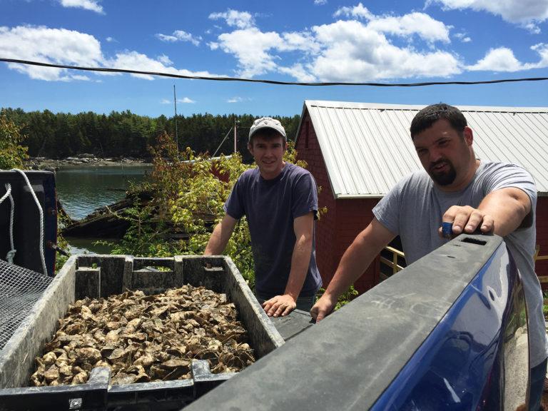 Article image for Reutilizando Maine: Instalaciones pesqueras envejeciendo encuentran nueva vida con la acuacultura