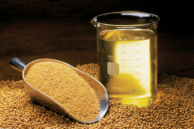 Article image for Soybeans: Truly sustainable feed ingredient? Part 2
