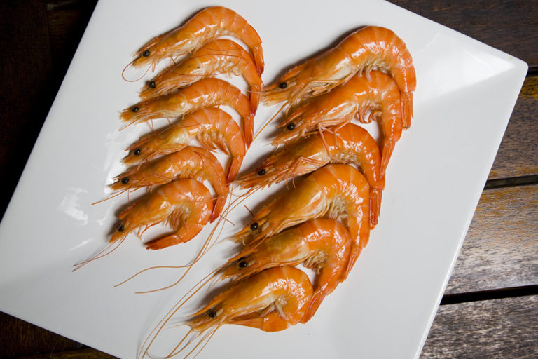 Article image for Developmental transcriptomes from penaeid shrimp