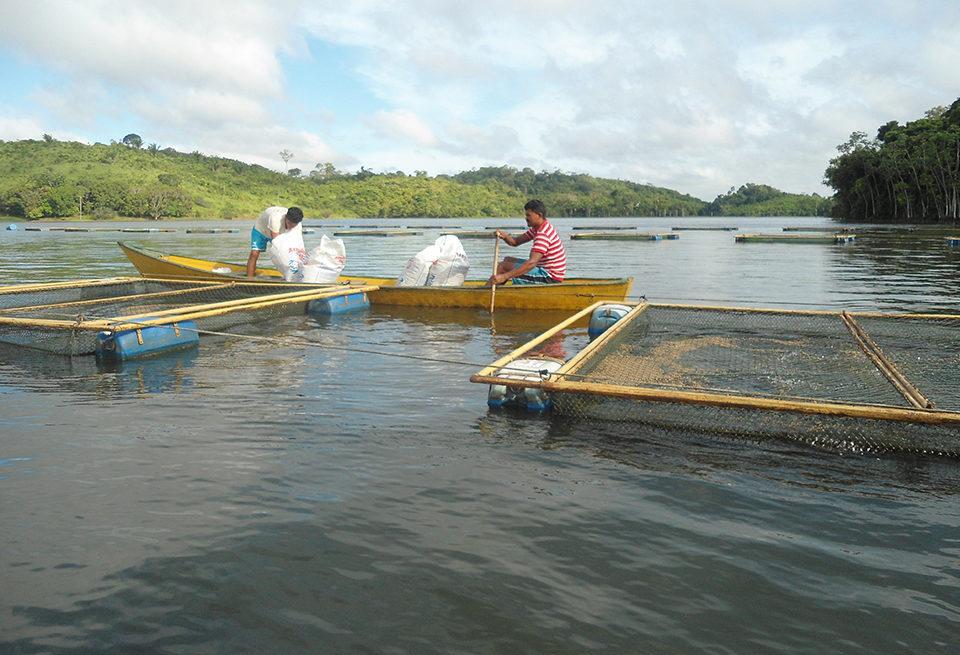 Brazilian federal waters