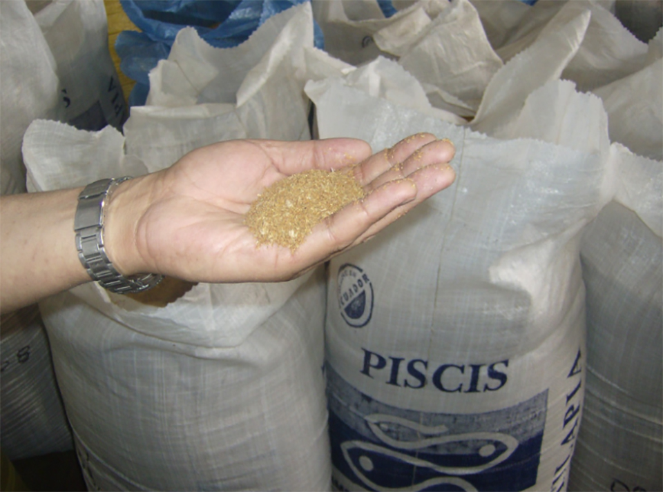 Article image for Feed Innovation Network: A streamlined aquafeed ingredient evaluation tool