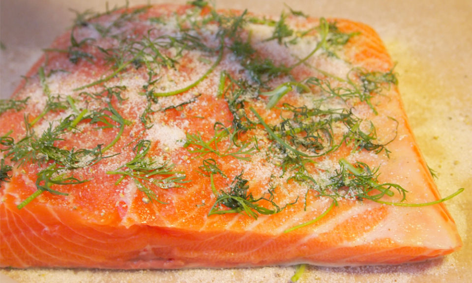 land-based salmon