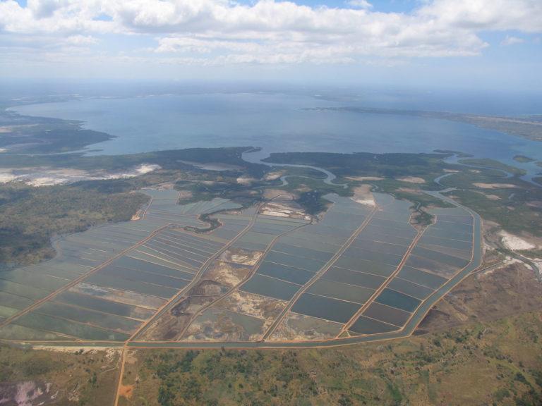 Article image for Estimating global shrimp pond area