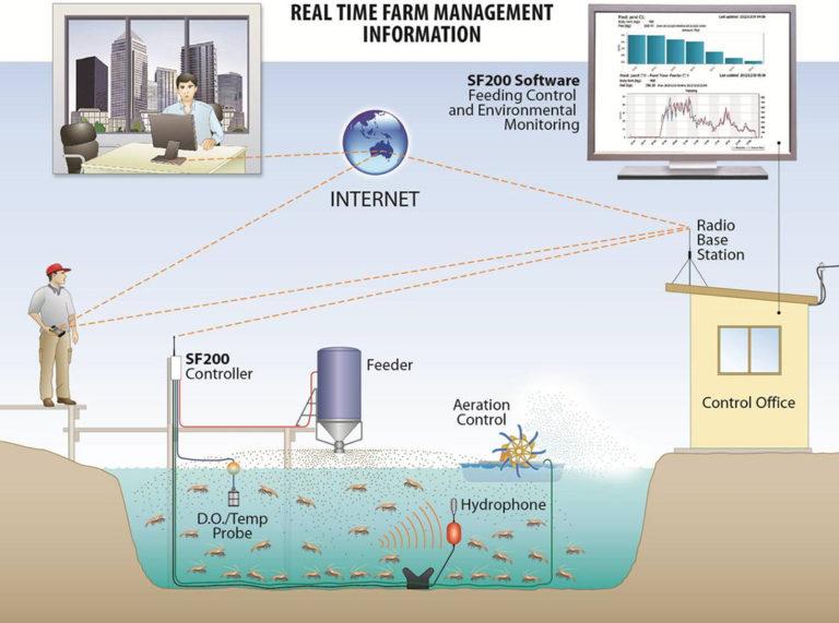 Article image for Sistemas automatizados de alimentación en la producción en estanques de camarón blanco del Pacífico