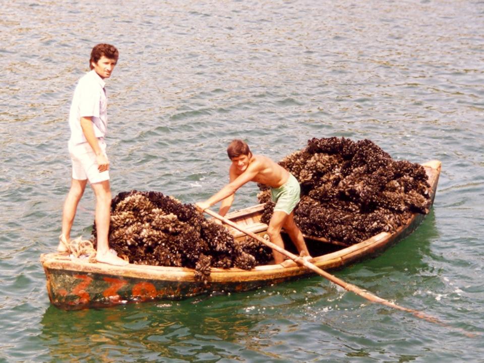 Article image for Market bottlenecks for small-scale aquaculture