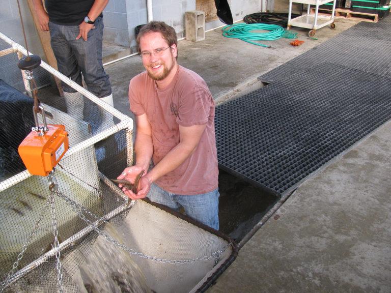 Article image for Comparación de salinidades en biofloc intensivo a escala comercial para camarón blanco del Pacífico