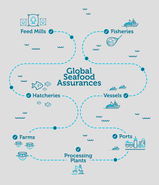 Global Seafood Assurances Launched to Address Gaps in Aquaculture, Fisheries Certification